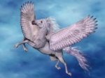 I want a horse that flies